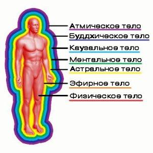 tonkie_tela_cheloveka